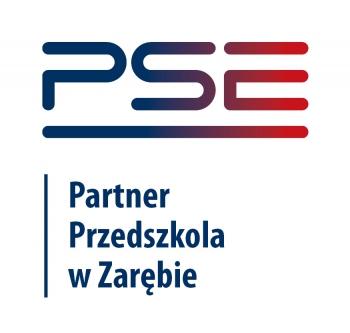 Partner Przedszkola w Zarębie 300dpi